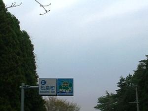 28_matsuhima04